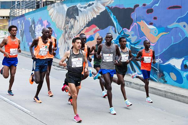 Men's lead group at the Bogota half marathon (Victah Sailer/organisers)