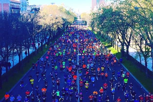 2016 Madrid Marathon (Organisers)