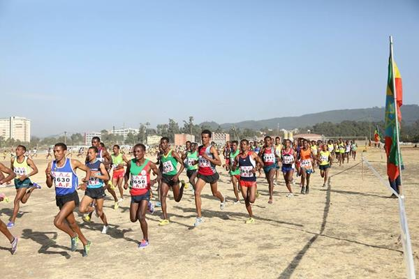 The senior men's race at the Jan Meda Cross Country (Ethiopian Athletics Federation)