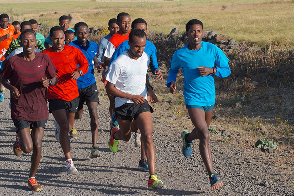 Deriba Merga (centre) and Lelisa Desisa (right) lead the elite men's marathon training group (Paul Gains)