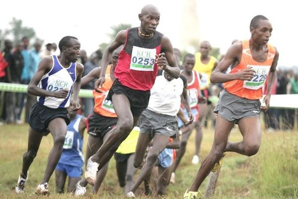 The junior men's field at the KCB/Athletics Kenya National Cross Country Championships at the Uhuru Gardens in Nairobi (Mohammed Amin/Daily Nation)