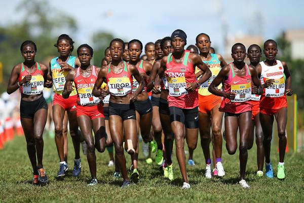 Action in the women's senior race at the IAAF World Cross Country Championships Kampala 2017 (Roger Sedres)