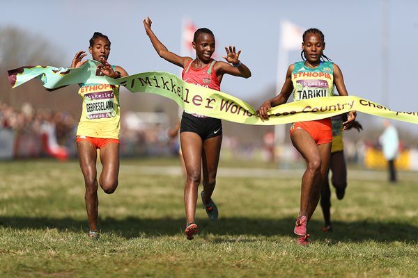Beatrice Chebet wins the U20 women's race at the IAAF/Mikkeller World Cross Country Championships Aarhus 2019 (Getty Images)