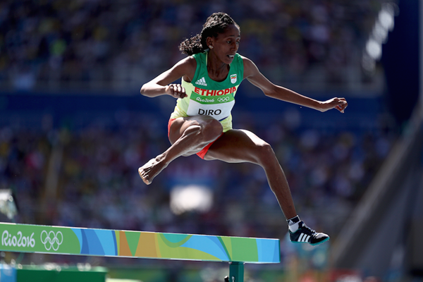 Etenesh Diro in the steeplechase at the Rio 2016 Olympic Games (Getty Images)