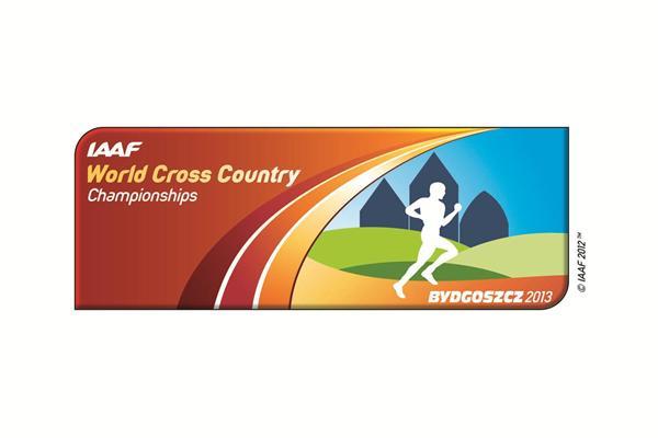 Bydgoszcz 2013 logo (IAAF)