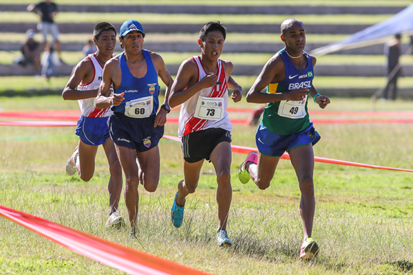 Rene Champi (73) on his way to winning the senior men's race at the South American Cross Country Championships (Oscar Munoz Badilla)