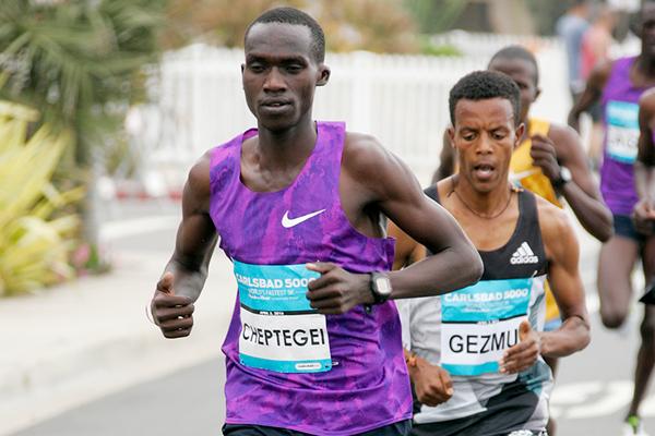 Ugandan distance runner Joshua Cheptegei (Getty Images / organisers)