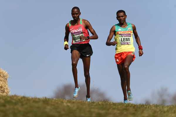 Elijah Manangoi and Taddese Lemi in the mixed relay at the IAAF/Mikkeller World Cross Country Championships Aarhus 2019 (Getty Images)