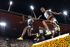 The women's 3000m steeplechase at the IAAF Diamond League final in Zurich (AFP / Getty Images)