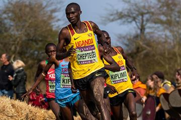 Joshua Cheptegei leads the senior men's race at the World Cross Country Championships Aarhus 2019 (Dan Vernon)