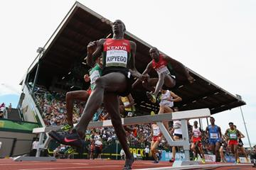 The men's 3000m steeplechase at the IAAF World Junior Championships, Oregon 2014 (Getty Images)