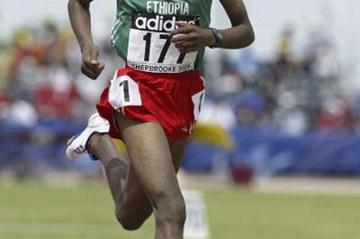 Tariku Bekele of Ethiopia winning his 3000m heat (Getty Images)