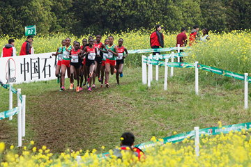 The senior women's race at the IAAF World Cross Country Championships Guiyang 2015 (Getty Images)
