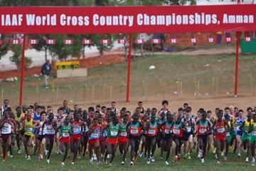 The start of the senior men's race at the 2009 World Cross in Amman (Getty Images)