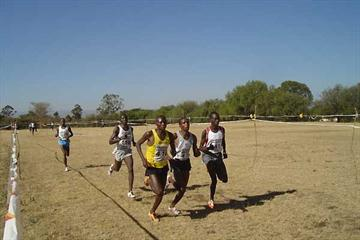 Isaac Songok, Augustine Choge and Jonas Cherruiyot battle in the senior 4km race (Omulo Okoth)