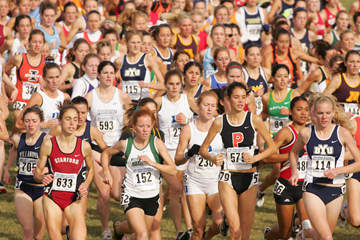 ncaa xc ()