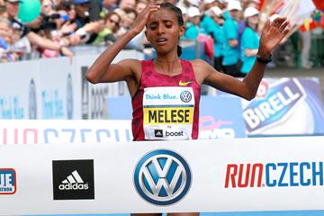 Yebrqual Melese wins the Prague Marathon (Victah Sailer / organisers)