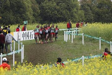 Irene Cheptai leads the senior women's race at IAAF World Cross Country Championships, Guiyang 2015 (Getty Images)