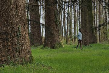 French distance runner Yosi Goasdoue during lockdown training on the grounds of La Bourdaisiere castle (AFP/Getty Images)