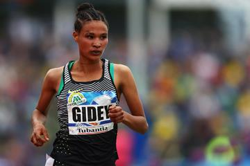 Letesenbet Gidey in the 2016 Hengelo 5000m (Getty Images)
