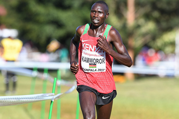 Geoffrey Kamworor on his way to winning the senior men's title at the IAAF World Cross Country Championships Kampala 2017 (Jiro Mochizuki)