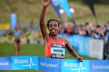 Genzebe Dibaba wins the international women's 3km race at the Bupa Edinburgh Cross Country (Mark Shearman)