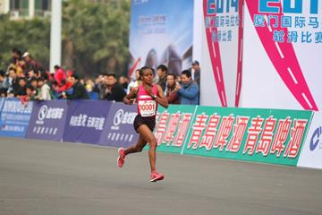 Mare Dibaba en route to winning the 2014 Xiamen International Marathon (Organisers)