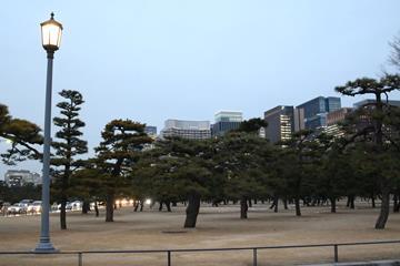 Tokyo's Imperial Palace Garden (Tokyo 2020 )