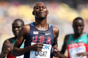 Bernard Lagat eases through the 5000m heats in Daegu (Getty Images)