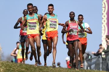 Ethiopia's Tsegay Kidanu and Tadese Worku lead the U20 men's race at the IAAF/Mikkeller World Cross Country Championships Aarhus 2019 (Getty Images)