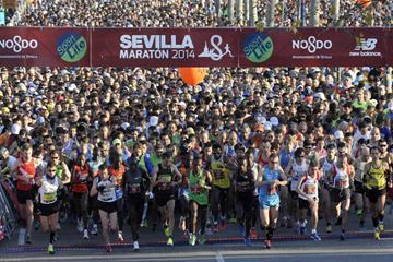 The start of the 2014 Maraton de Sevilla (JJ Ubeda / organisers)