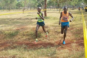 Eventual winner Phillip Kipyeko (left) runs alongside Moses Kipsiro at the Ugandan Cross Country Championships (Namayo Mawerere)
