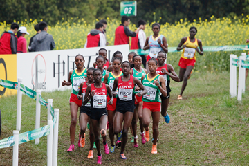 Irene Cheptai leads the senior women's race at the IAAF World Cross Country Championships Guiyang 2015 (Getty Images)