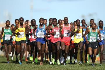 Action in the men's senior race at the IAAF World Cross Country Championships Kampala 2017 (Roger Sedres)