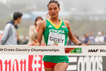 Gidey, Molla, Dida among the winners at Ethiopian cross country championships