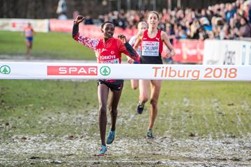 Another European Cross Country Championships triumph for Yasemin Can, this time in Tilburg (Getty Images)