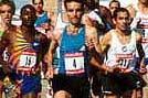 Fabian Roncero in Action (RFEA)
