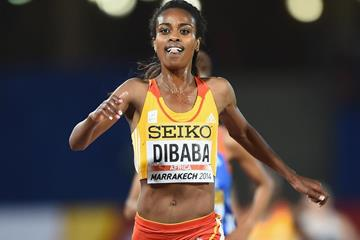 Genzebe Dibaba, winner of the 3000m at the IAAF Continental Cup, Marrakech 2014 (Getty Images)