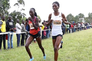 Kenya's Lydia Lagat (left) in cross-country action (Getty Images)