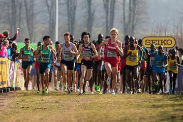 Athletes in action at the World Athletics Cross Country Championships (Dan Vernon)