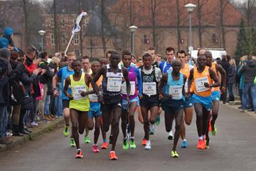 The leading pack (winner Hizqel Tewelde bib 20) at the 2014 Montferland Run  (Organisers)
