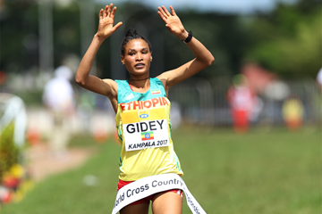 Letesenbet Gidey wins the U20 women's race at the IAAF World Cross Country Championships Kampala 2017 (Roger Sedres)
