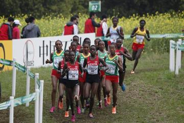 Irene Cheptai leads the senior women's race at the IAAF World Cross Country Championships, Guiyang 2015 (Getty Images)