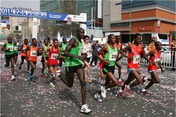 Start of the Daegu International Marathon, the final test run for the 2011 World Championships course (Organisers)
