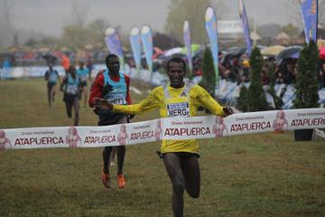 Imane Merga wins at the 2013 Cross Internacional de Atapuerca (Miguel Alfambra 'Fundación ANOC'.)