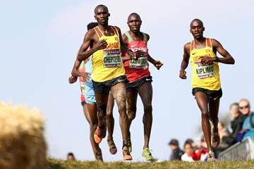 Joshua Cheptegei and Jacob Kiplimo lead the senior men's race at the World Cross Country Championships Aarhus 2019 (Getty Images)