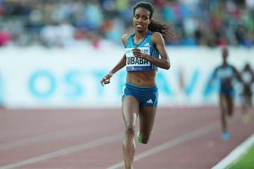 Genzebe Dibaba on her way to an African 2000m record in Ostrava (Pavel Lebeda / sport-pics.cz)