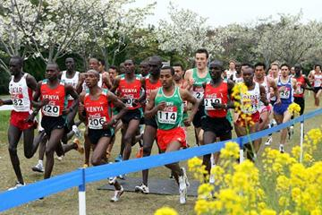 Kenenisa Bekele in the vanguard of the men's Short Race in Fukuoka (Getty Images)