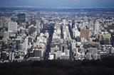 A general view of Sapporo (AFP / Getty Images)