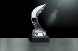 The IAAF World Athlete of the Year award (IAAF)